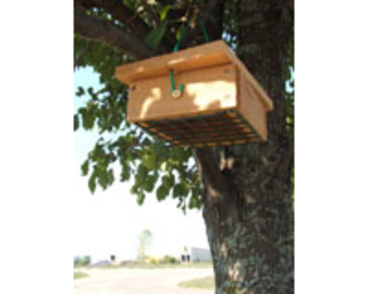 Upside Down Suet Cake Feeders keep birds like starlings and blue jays from gobbling up all your suet!