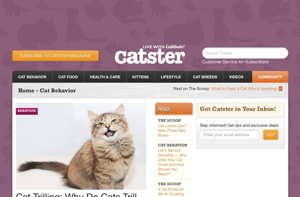Screenshot of the Catster website