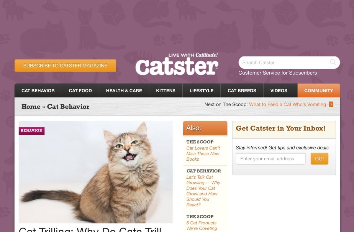 Screenshot of the Catster website