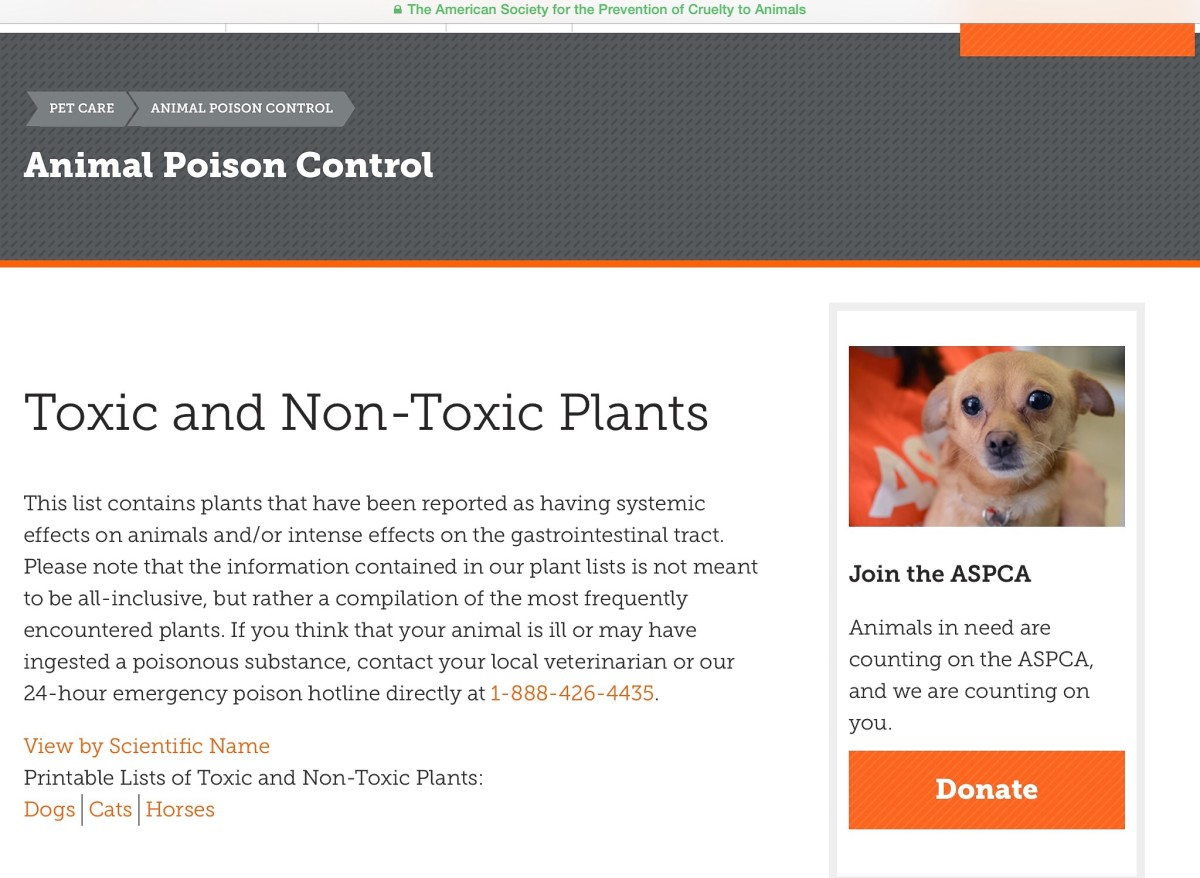 Screenshot of the Toxic Plants section of the ASPCA Animal Poison Control Center