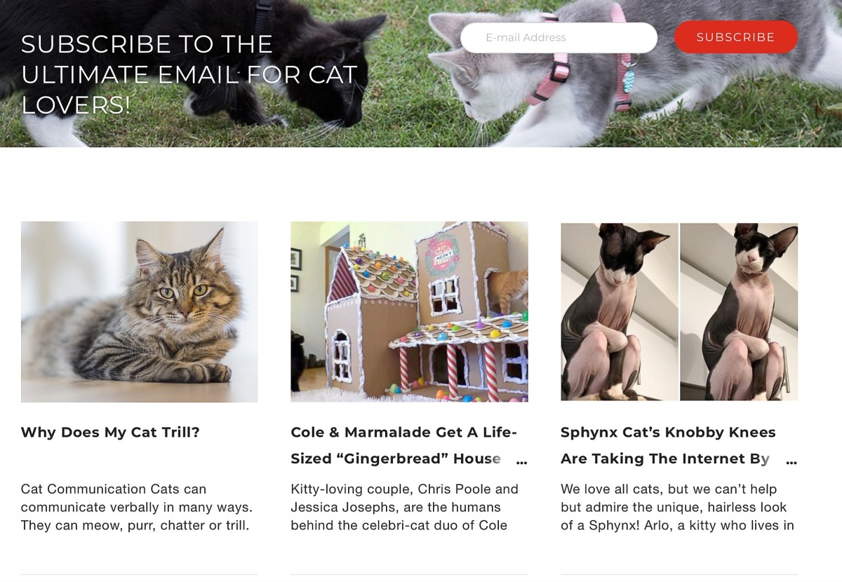 Screenshot of the iHeartCats home page below the shopping ads