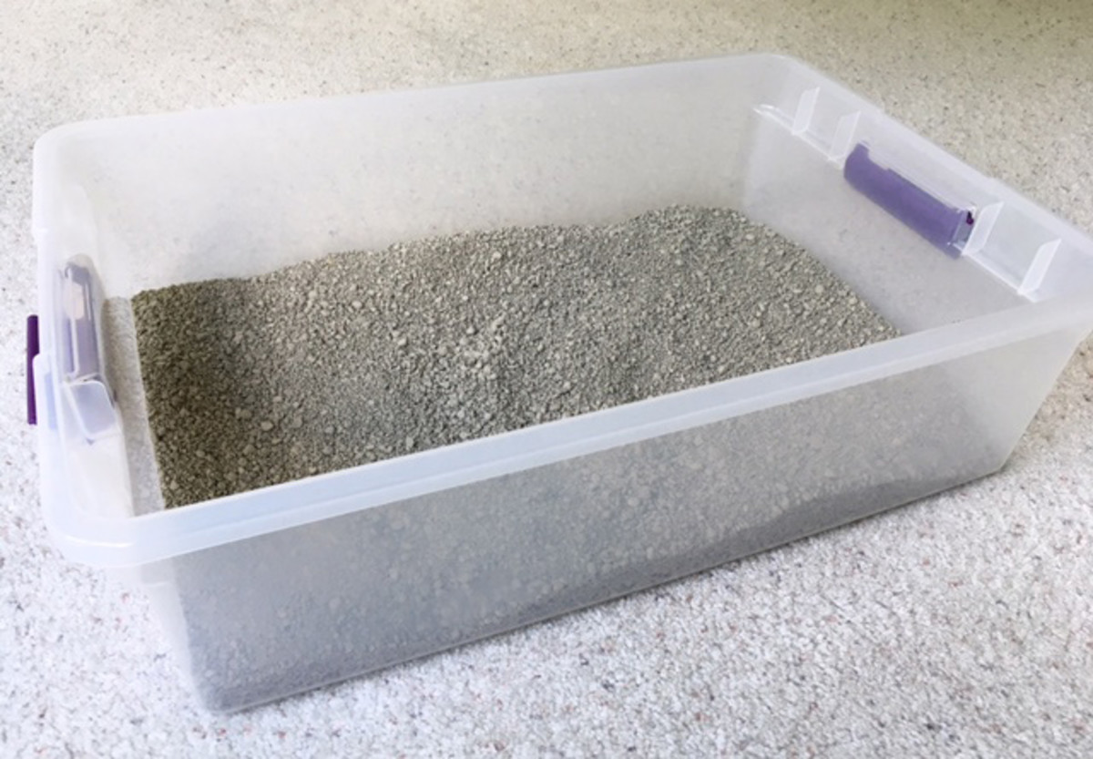 "This is the Sterilite 1655 28 Quart Storage Box that my cats use as their litter box. The dimensions are 23"" L, 16.25"" W, 6"" H. It can usually be found for under $5 US in the home organization section of discount stores."