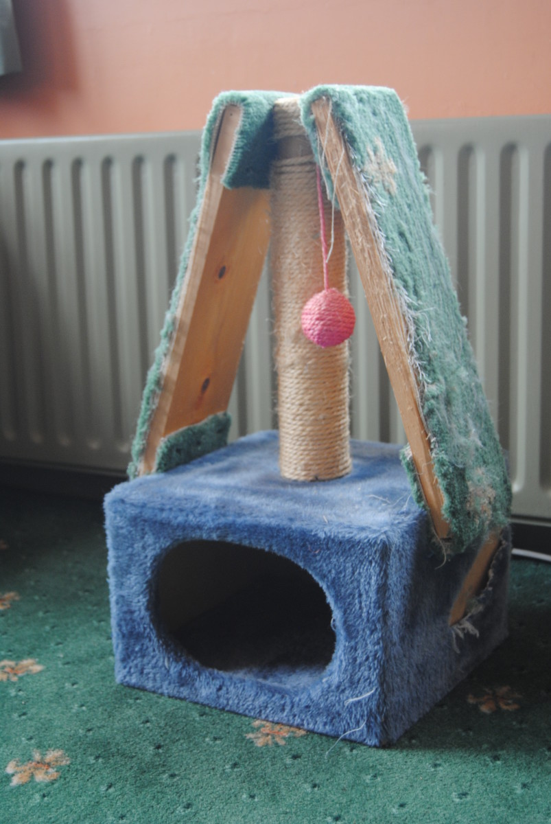 Our own well used scratching post