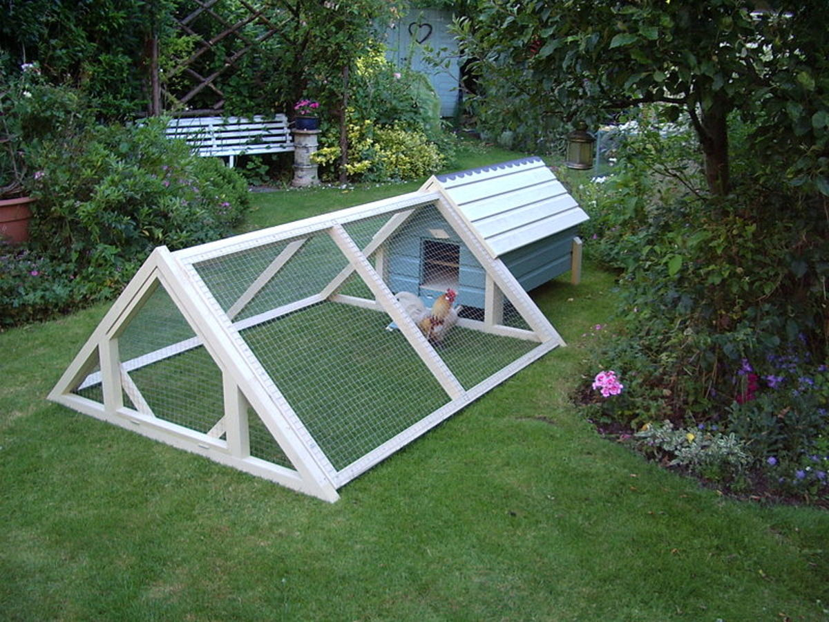 A chicken tractor with a coop attached