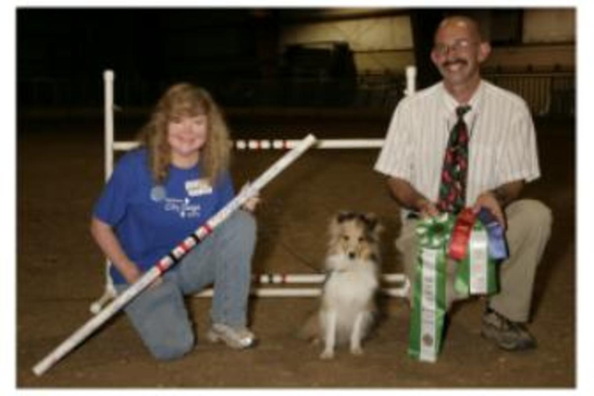 Make sure your instructor has plenty of experience.  If they or their students compete in dog sports, check out their accomplishments - or lack thereof.