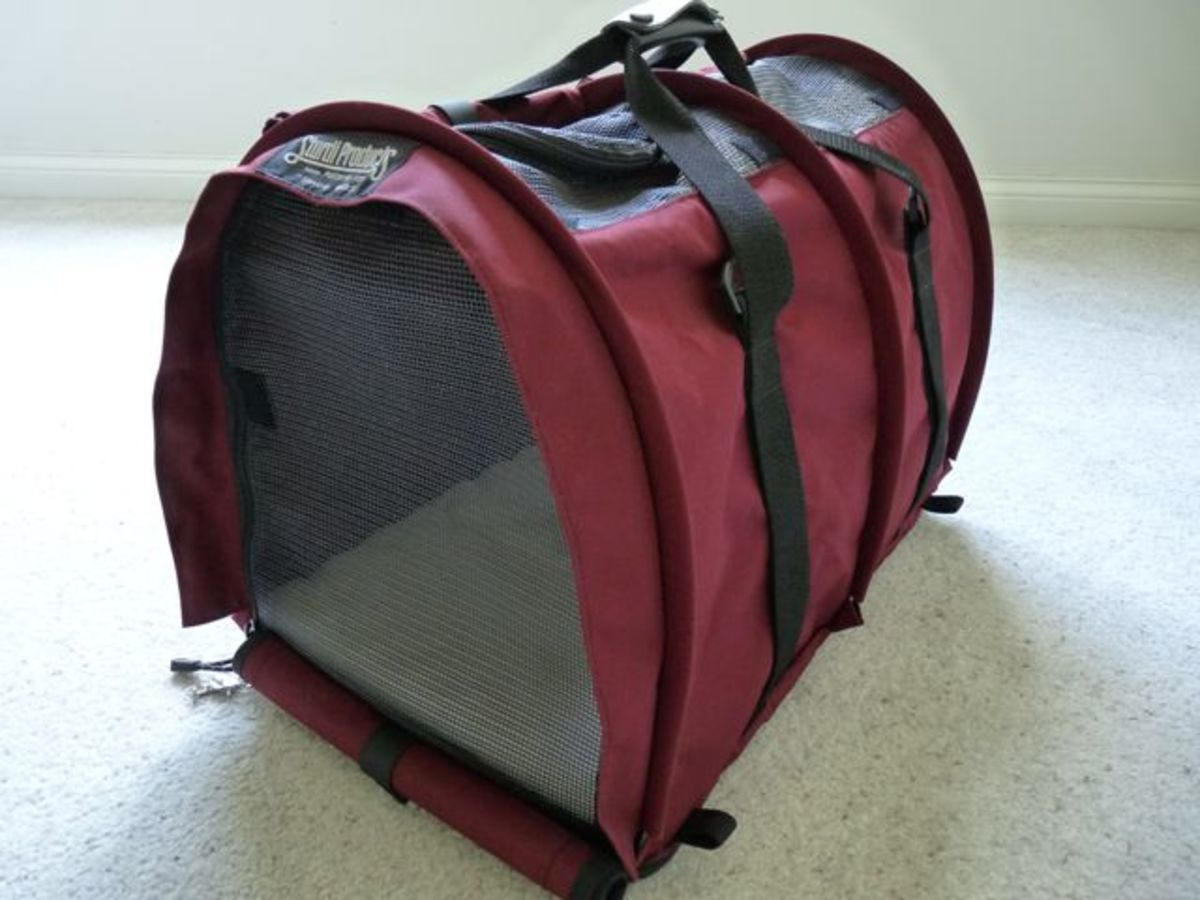 An Extra-Large Sturdi Bag Pet Carrier in Bordeaux