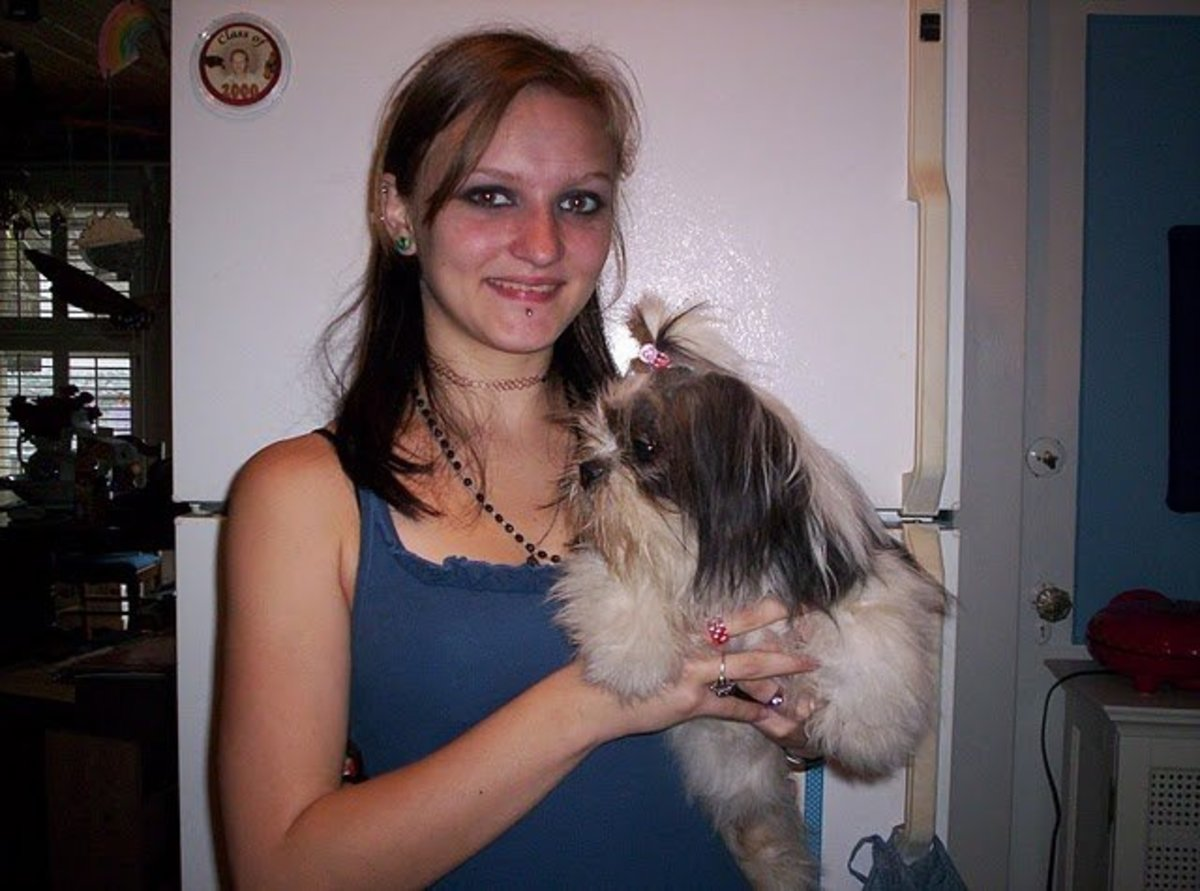 Our granddaughter and our clean Shih Tzu.