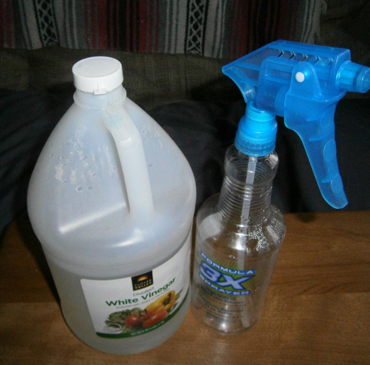 Make a vinegar rinse for the Shih Tzu's bath.