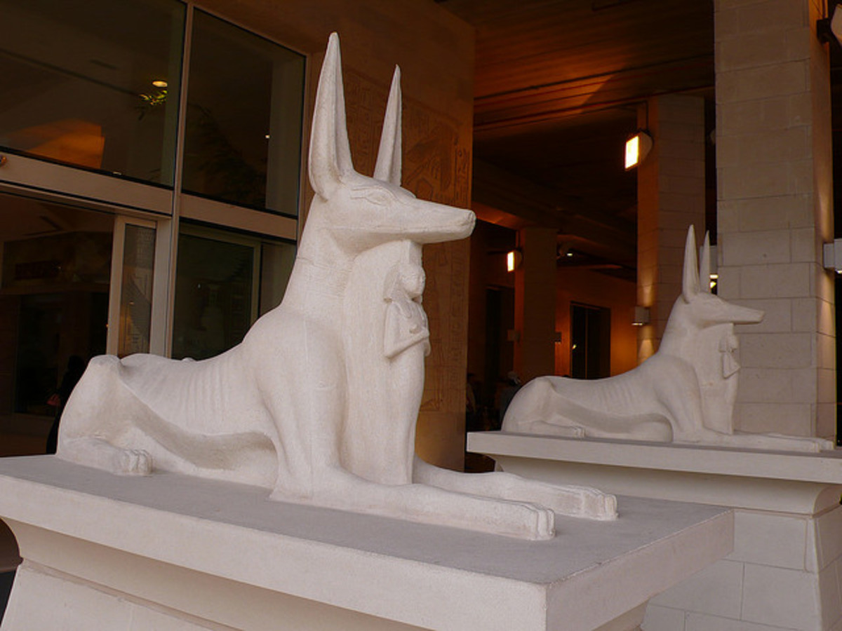 Egyptian dogs or jackals?