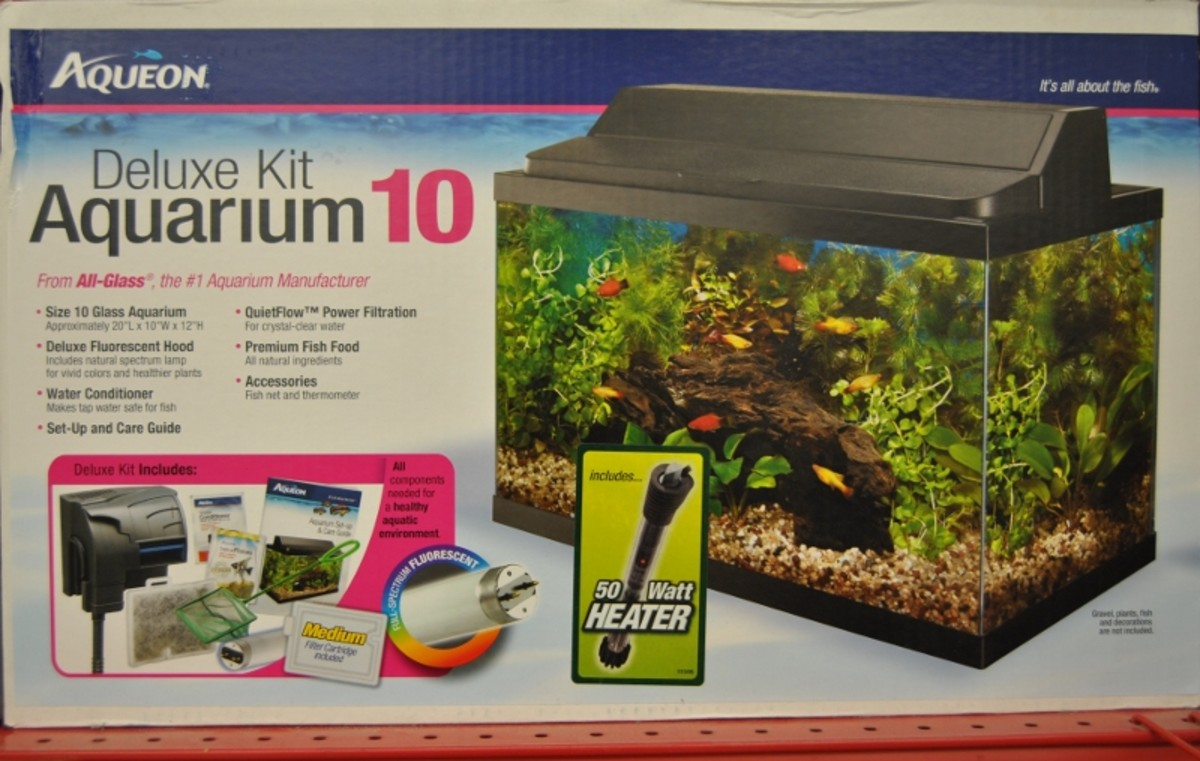 Example of a basic aquarium starter kit