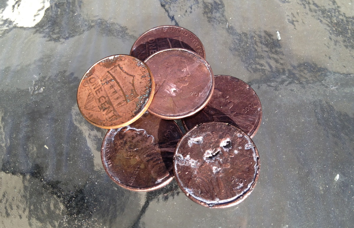 These are the 6 pennies our dog ate. You can see where the metal has disintegrated. Smaller dogs and children are at higher risk for zinc toxicity (Penny is 20 lbs).