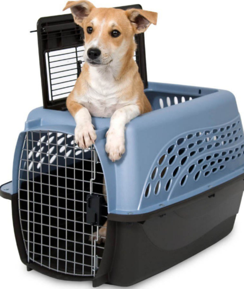 "The Petmate 2 Door Top Load Kennel makes it easy to get your dog in and out of his carrier. This carrier is available in 19"" and 24"" models."