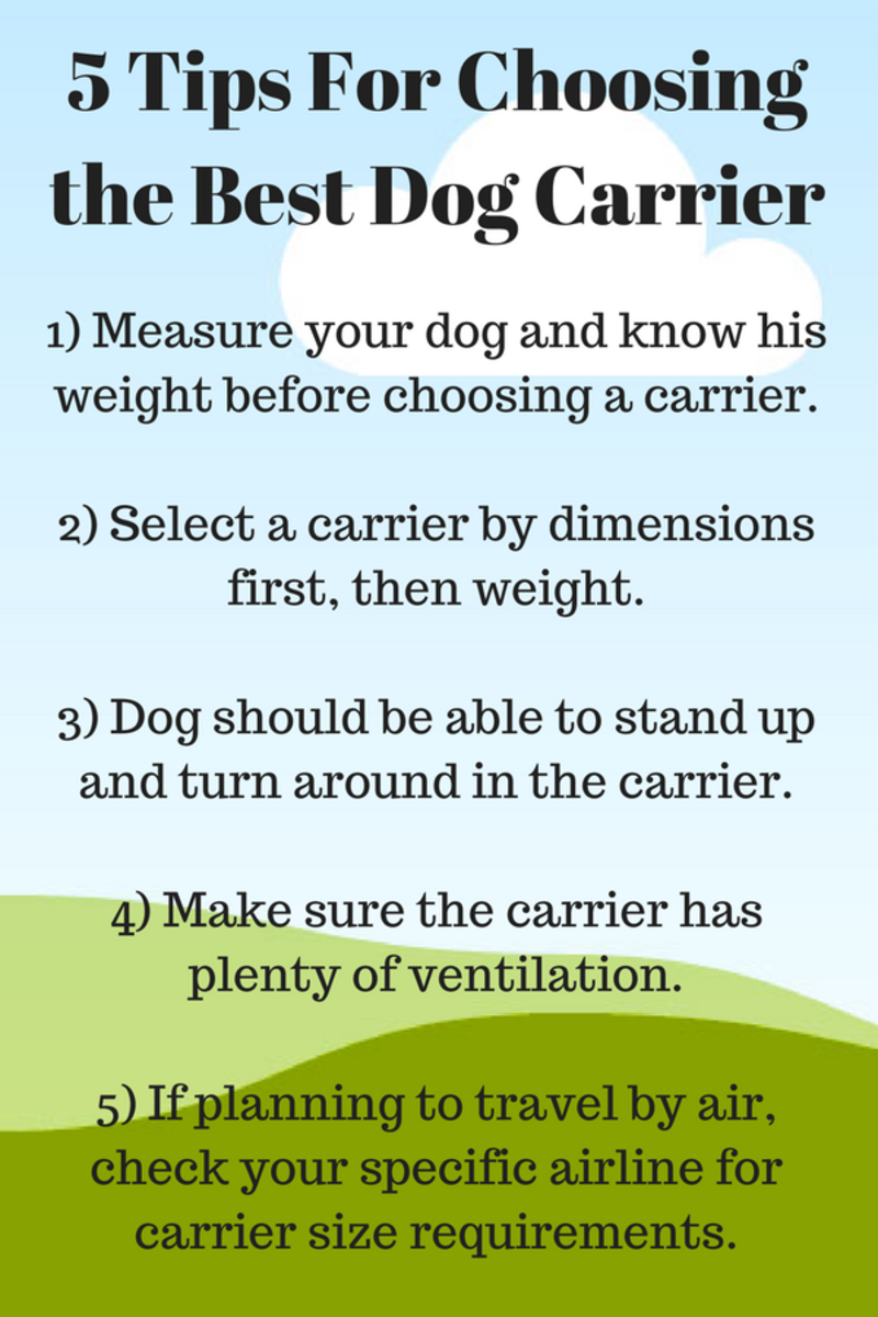 Choosing the right dog carrier makes travel more pleasant for both you and your dog.