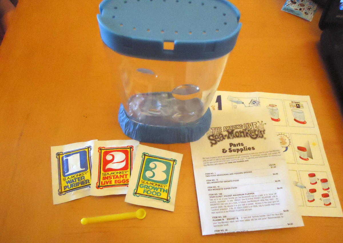 Contents of the sea monkey kit.
