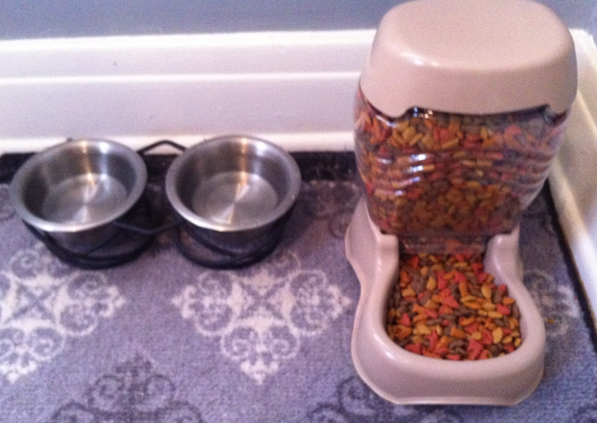 Providing a clean area for your cats to eat and drink will be appreciated.