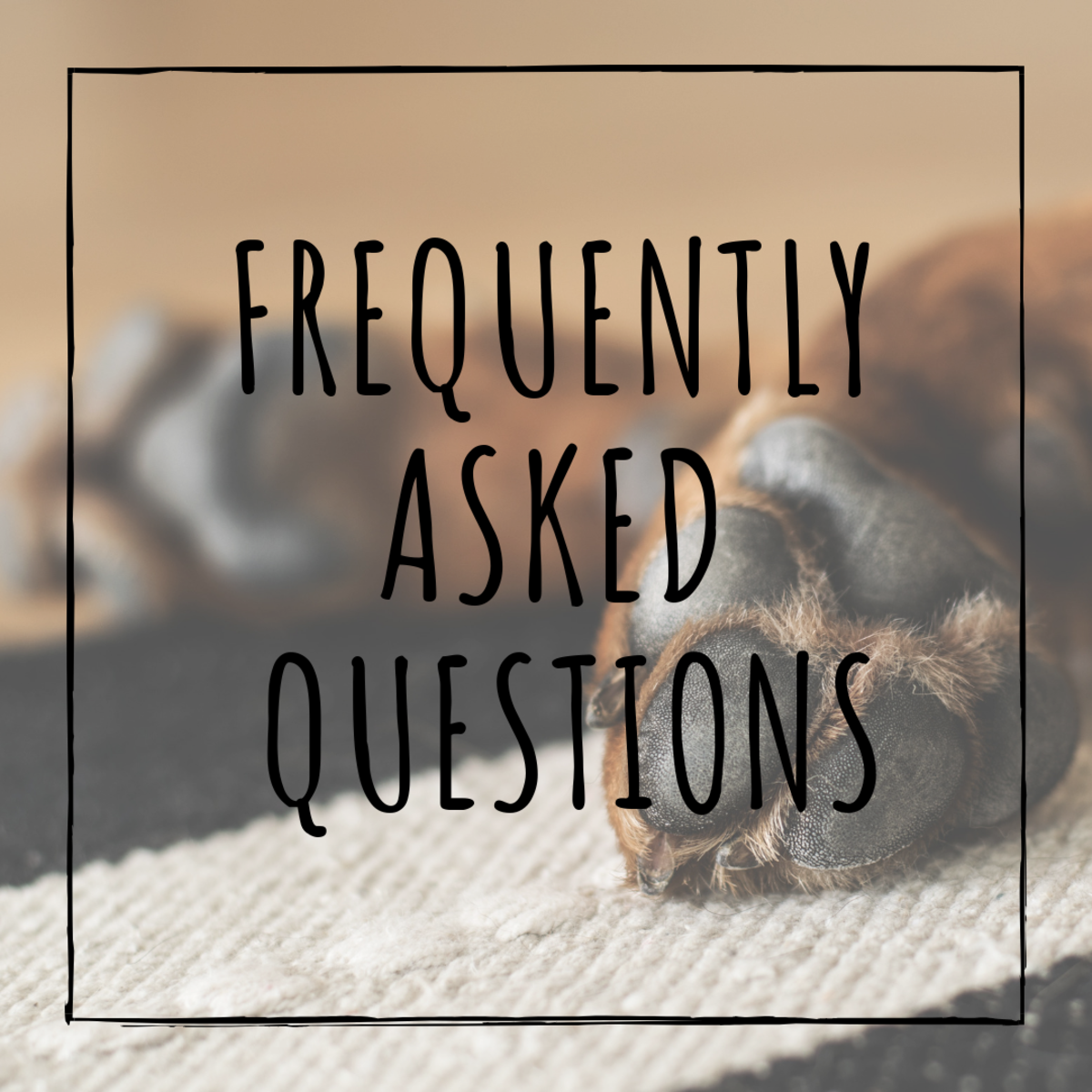 What  if you cut the quick? What if your dog is afraid of the trimmers? Frequently asked questions answered.