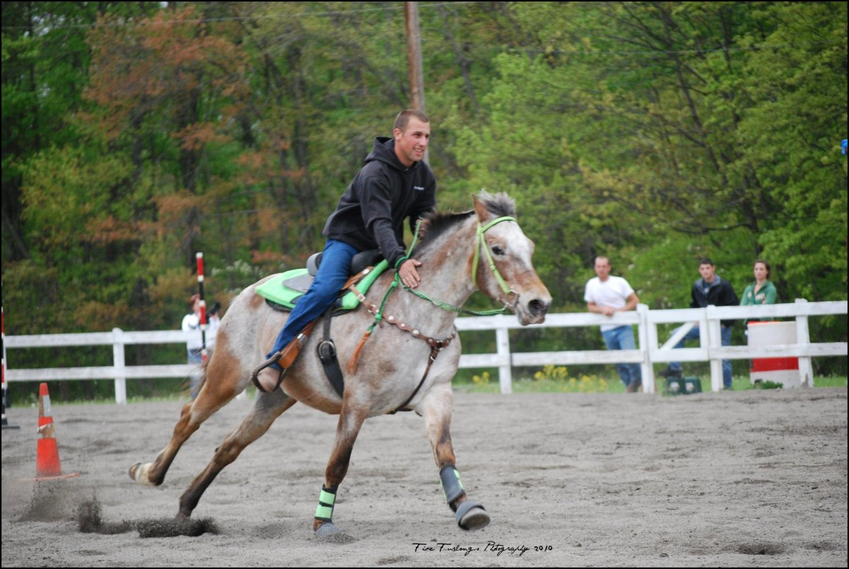 Barrel racing on an Appaloosa