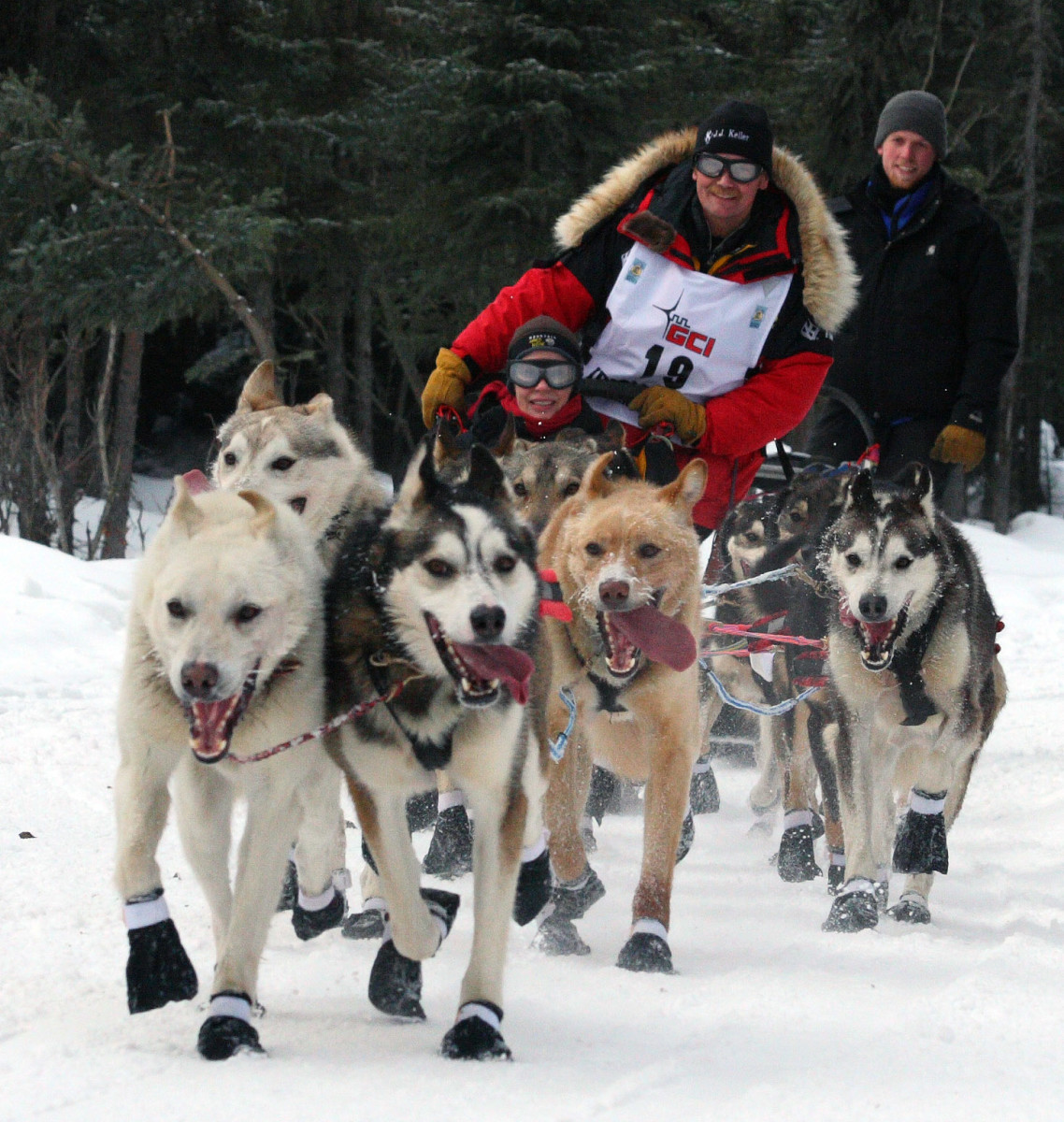 Mitch Seavey and his sled team.