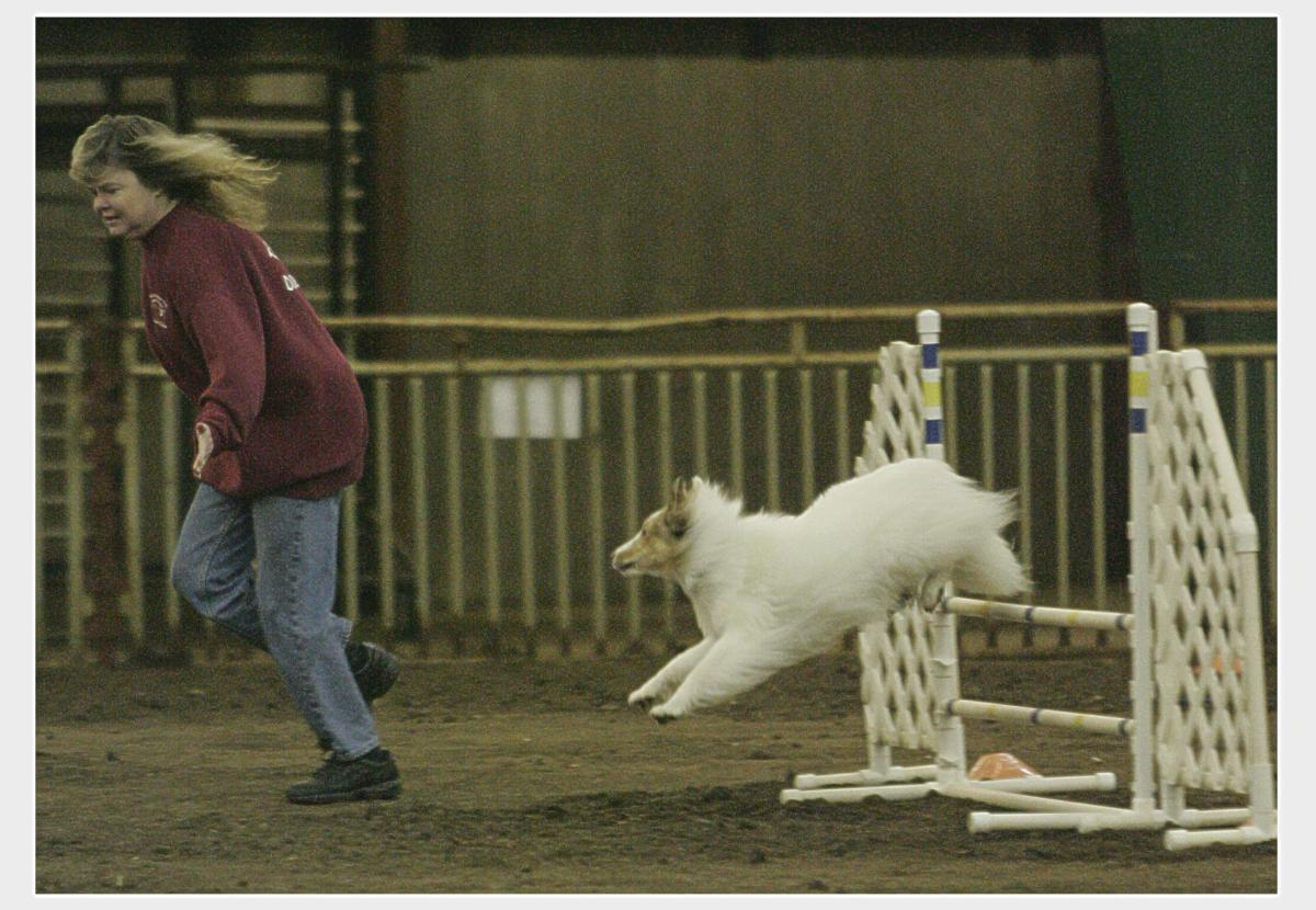Focus during an agility run requires practice to train the brain.