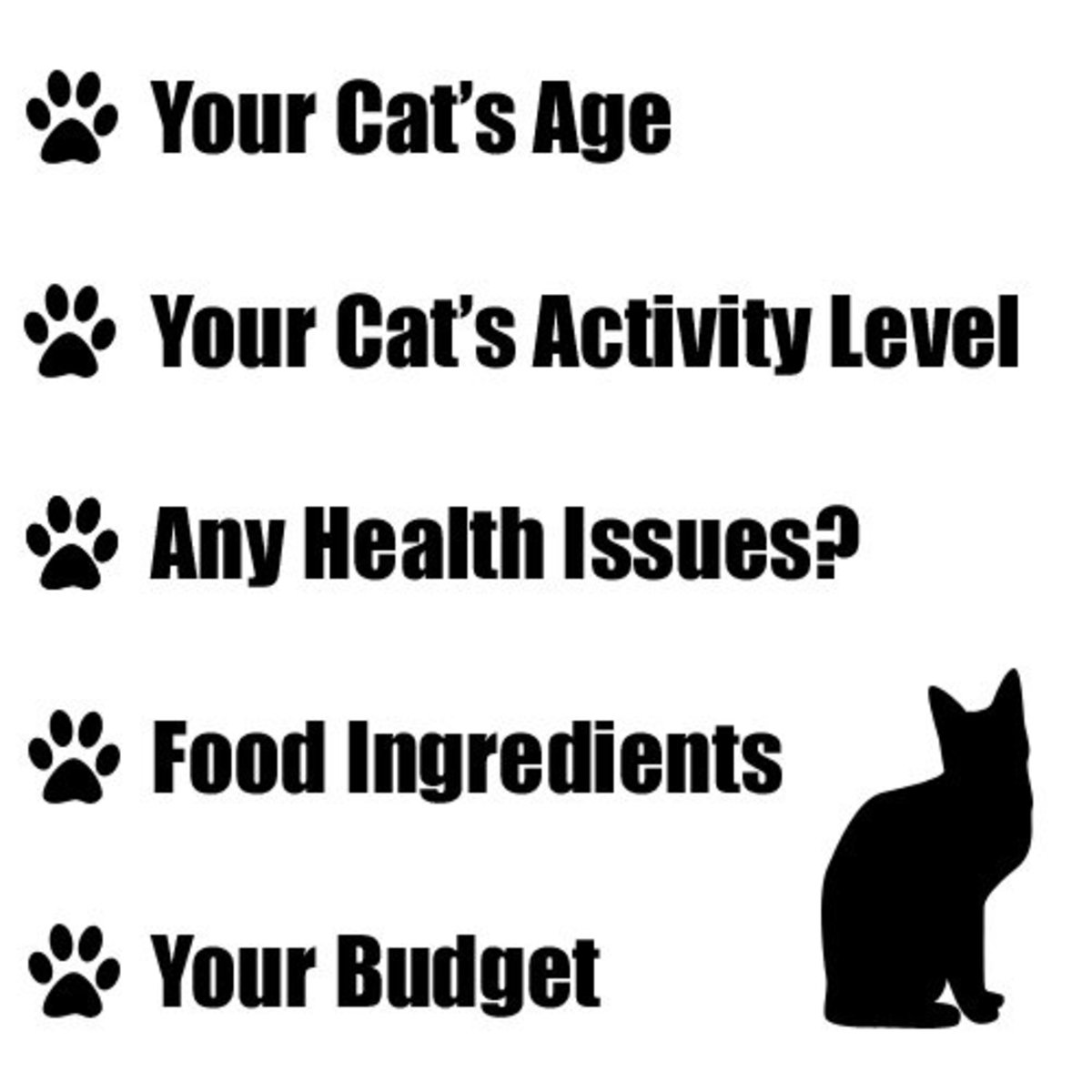 Five important factors to consider when choosing the best cat food for your cat.
