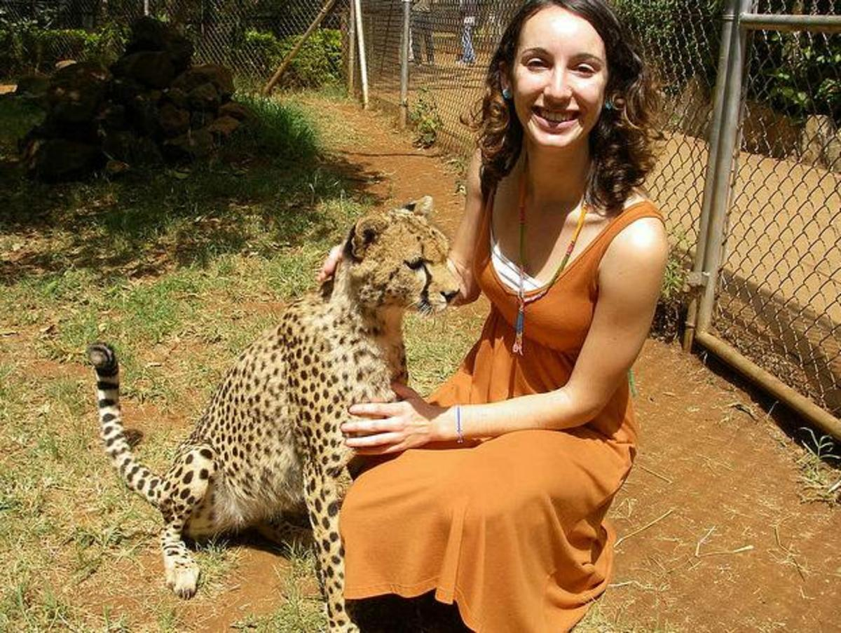Woman petting a docile cheetah in a reserve