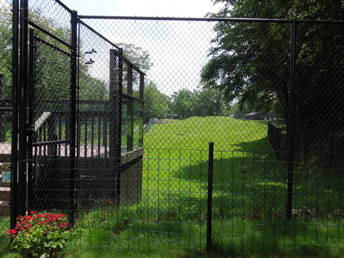 Example of a cheetah breeding enclosure at Leo Zoological Conservation Center. Copyright Melissa Smith. All Rights Reserved.