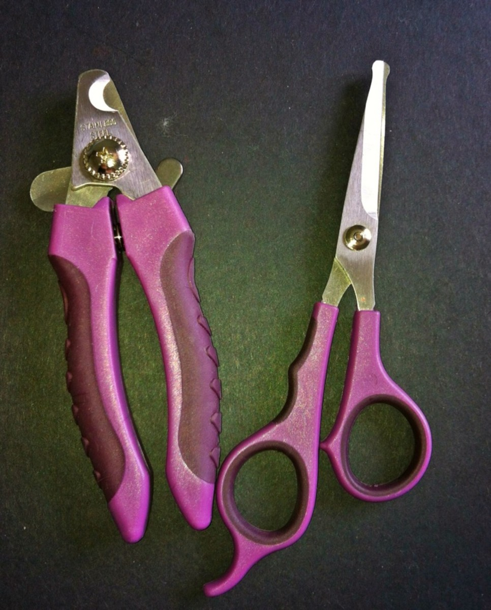 Bull-nosed scissors and nail clippers.