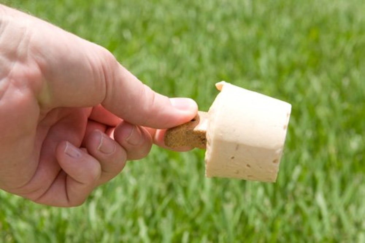 Pupsicle (or Doggy Popsicle) is the perfect size for a quick cool-down homemade treat for your dog.
