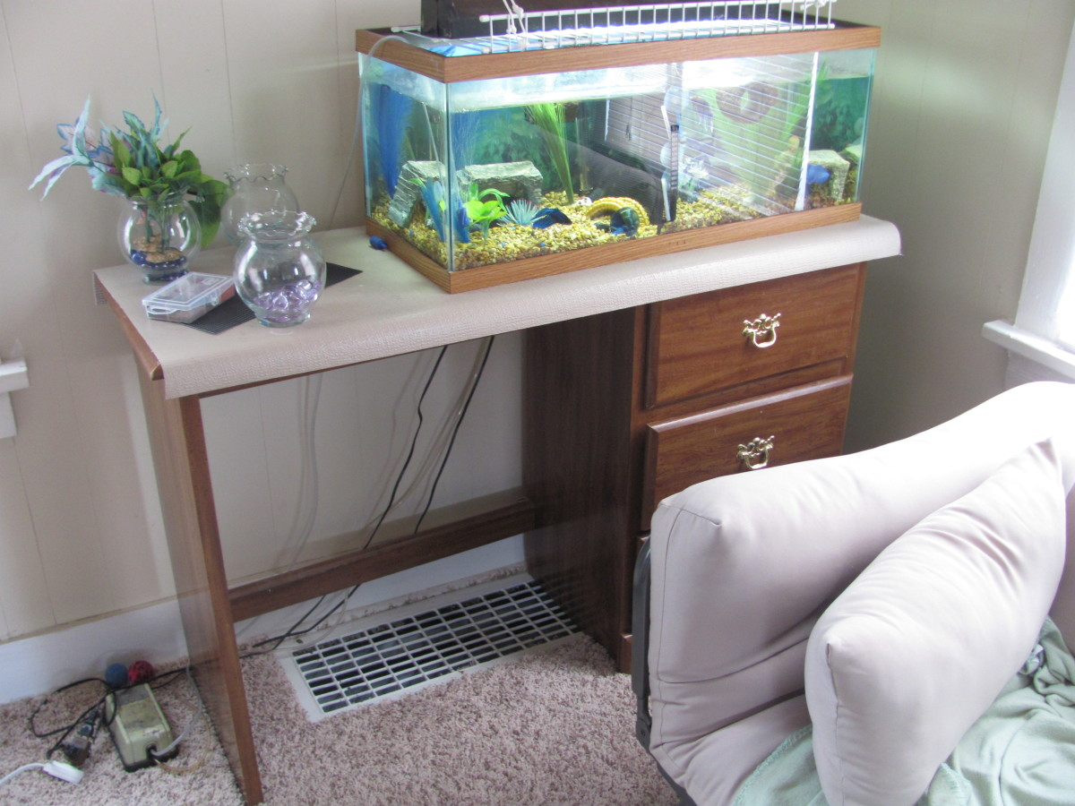 A 20-gallon tank. Notice how the tank is on the side with the drawers where there is more support than on the left.