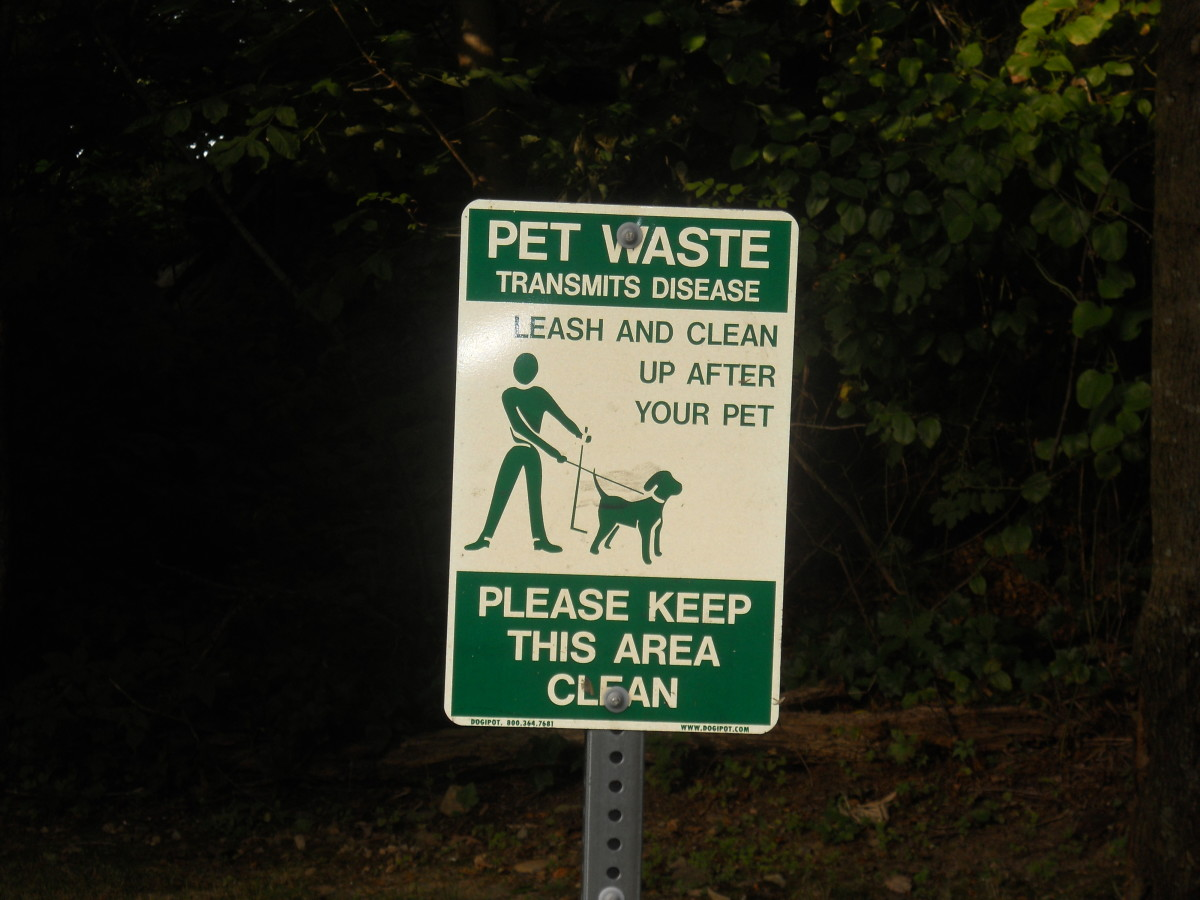 Even public signs acknowledge the health threat that dogs pose to society.