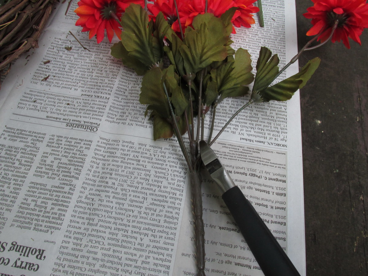With wire cutters, snip the stems just above the thickest part of the 'bush'.
