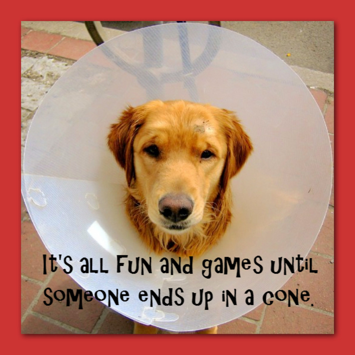 It's all fun and games until someone ends up in a cone.