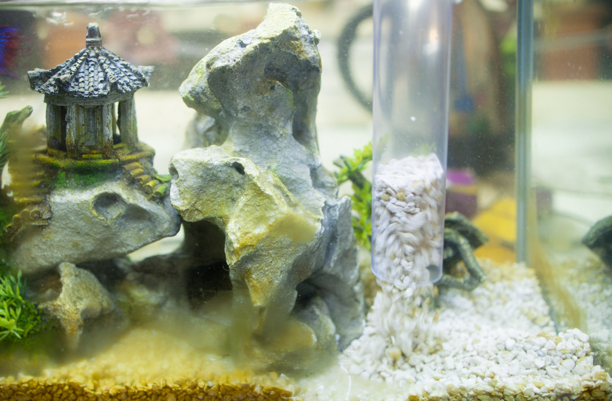 You can change your water and clean your substrate at the same time.