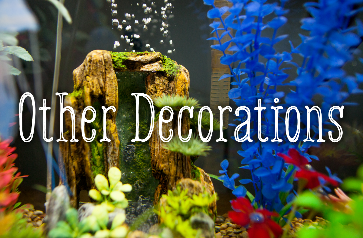What other decorations are safe for your tank.