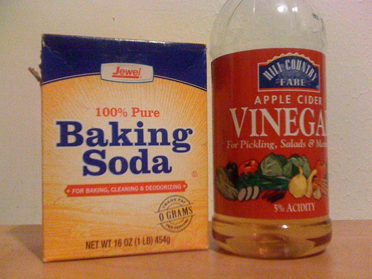 Baking soda or vinegar may help rid your dog of a bad smell.