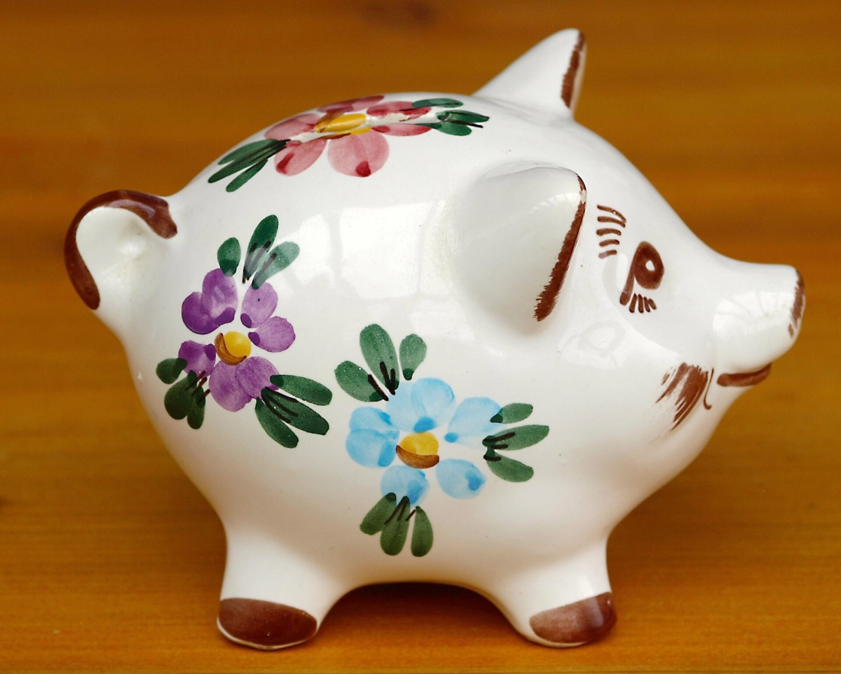 It's important to save for pet emergencies. A piggy bank may work, but a savings account at a bank is probably a better idea.