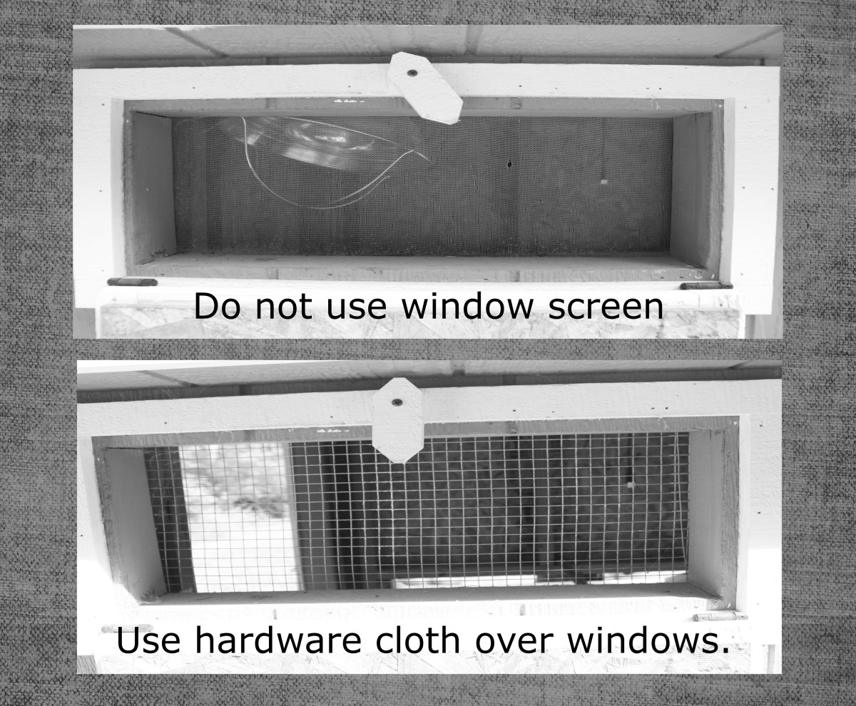 "This chicken coop originally had regular window screens, which created a vulnerability to predators. The screen was replaced with 1/2"" hardware cloth to make this opening predator-proof."