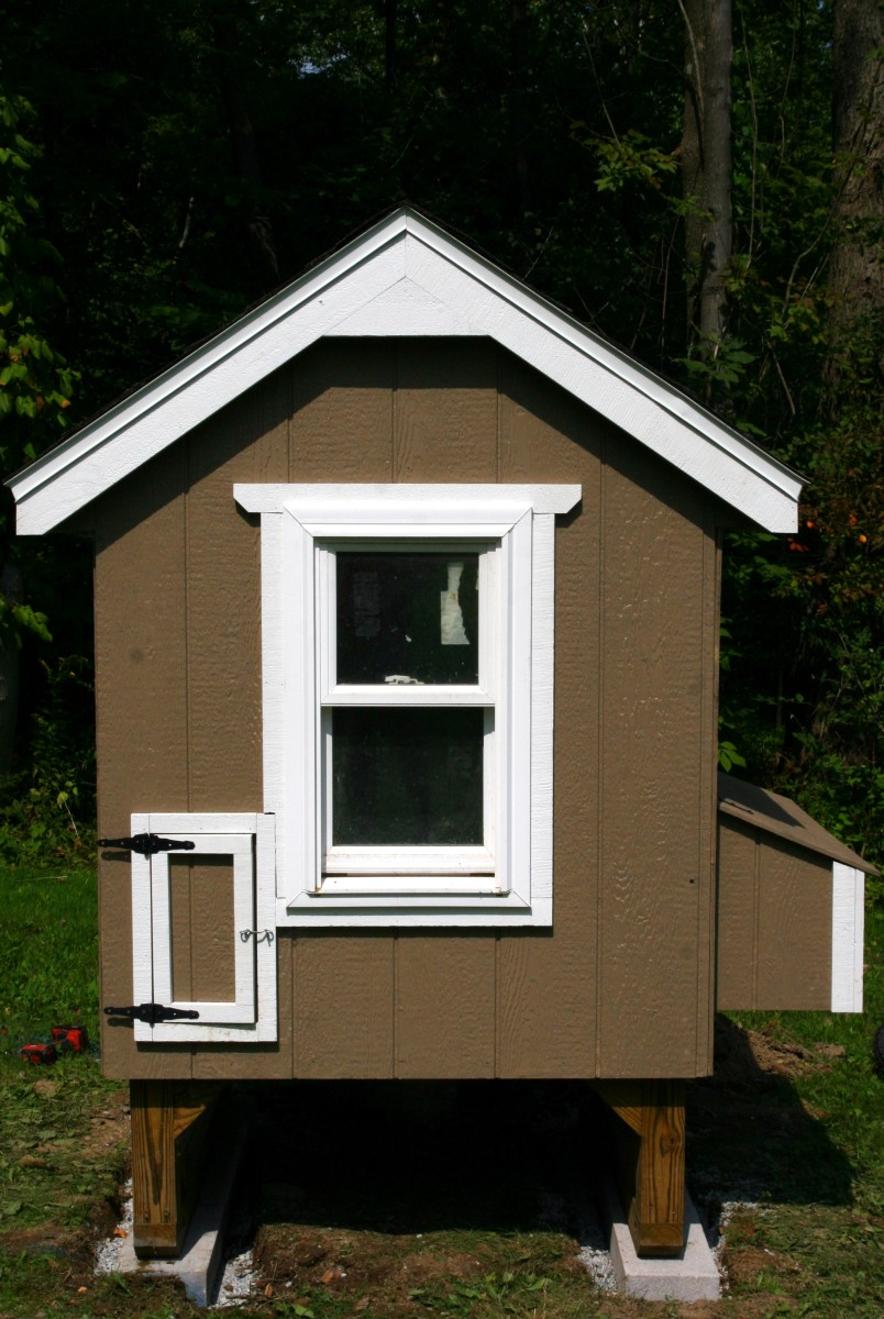 This chicken coop is elevated off the ground to provide proper air circulation and as an added barrier to small predators.