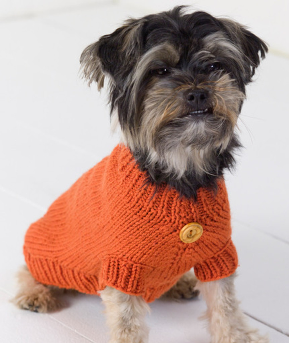 Make your own dog sweater by following a pattern.
