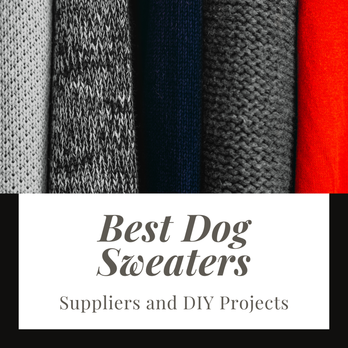 Best Options for Dog Sweaters