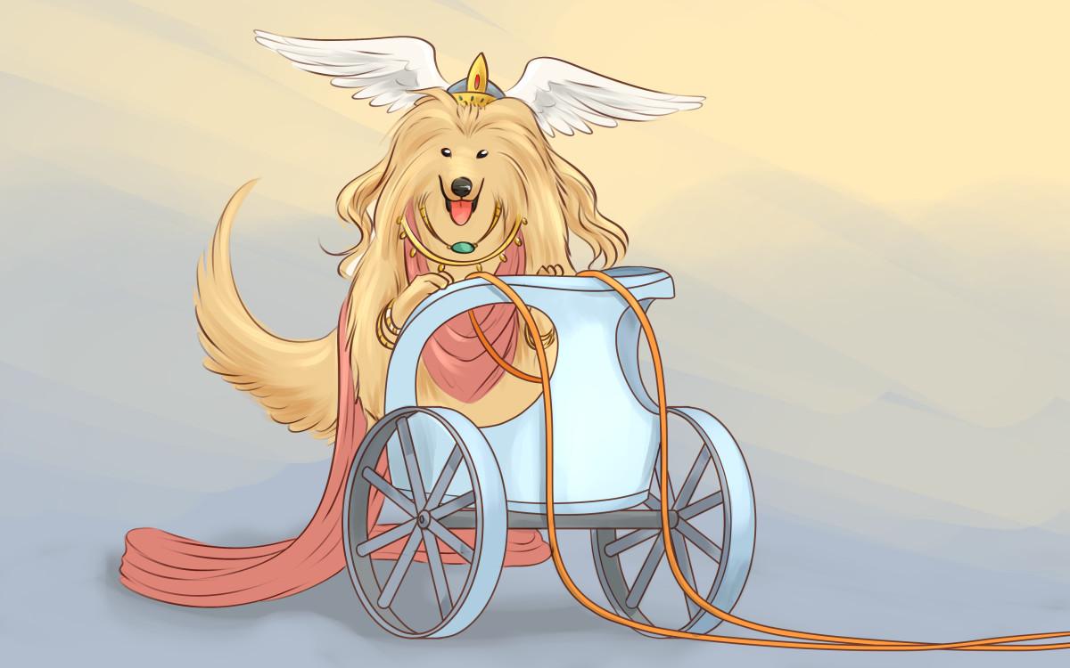 Does your ladylike dog remind you of the goddess Freya?