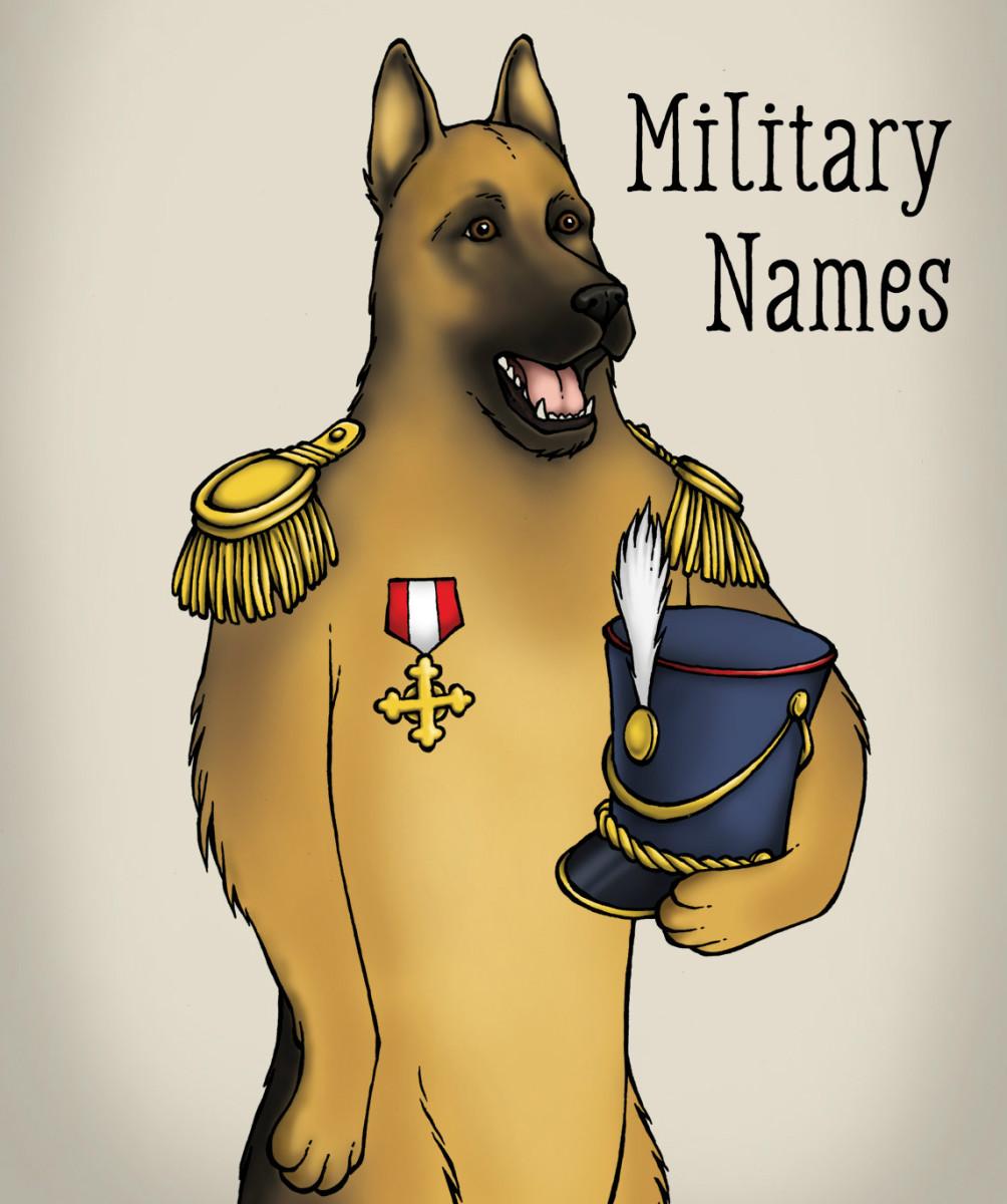 Army Dog Names Male