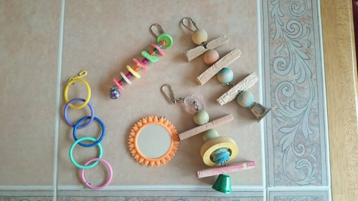 A few plastic, a few wooden, and a mirror toy is a good variety to have in a bird cage. Do not place too many mirrors.