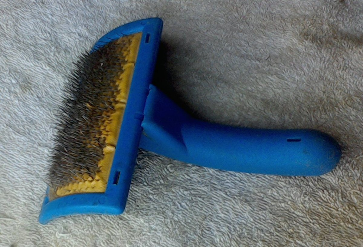 An excellent example of a curved dematting brush. Its curved surface and sharp, curved pins can remove most of the dead and matted hair.