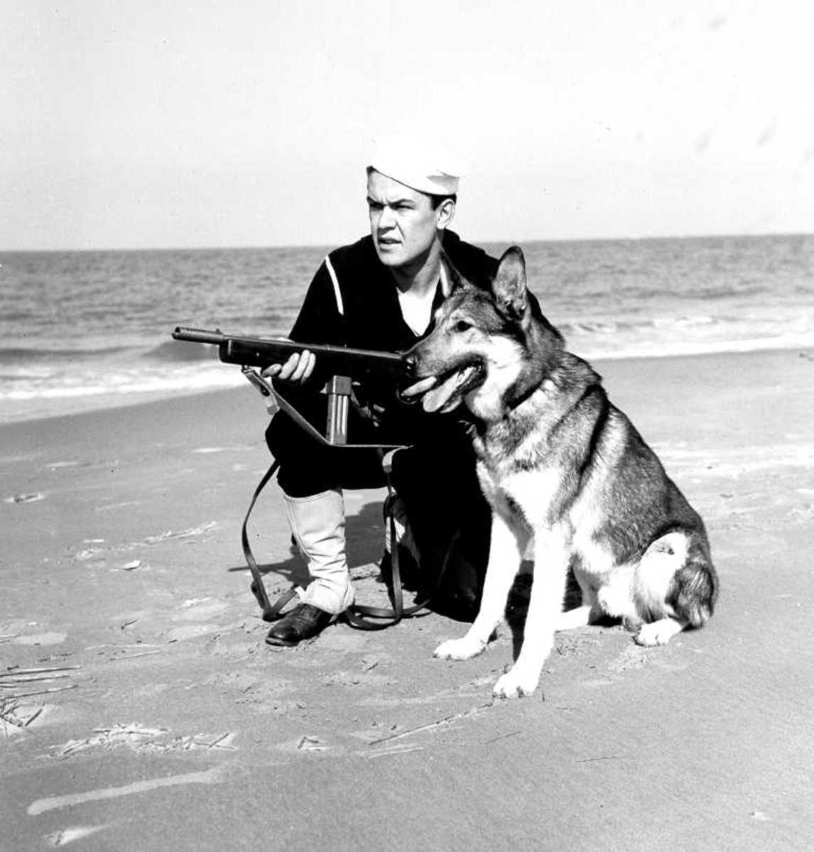 German Shepherd and US Coast Guard Defend the US shores