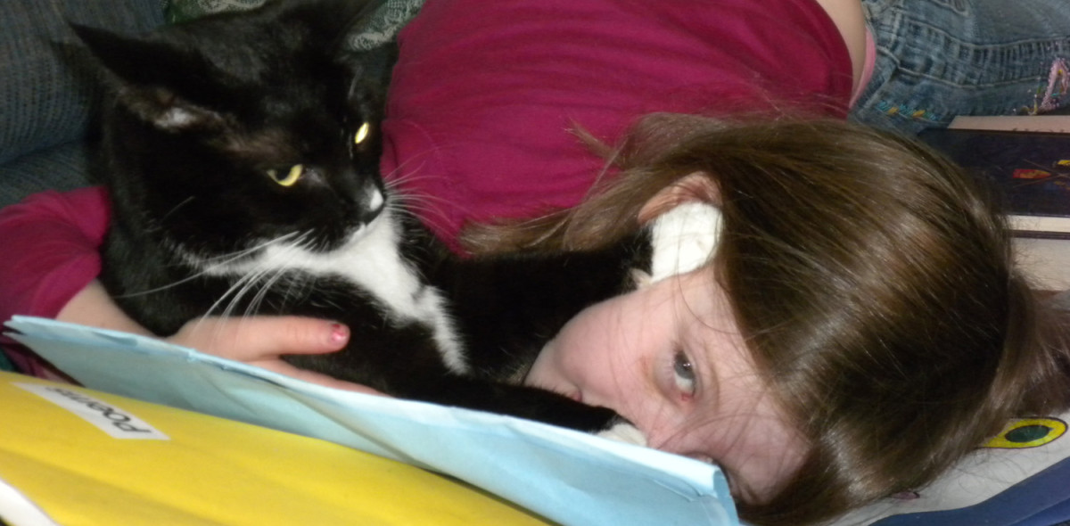 Ten years later, and this cat still runs to my daughter when she gets home from school.
