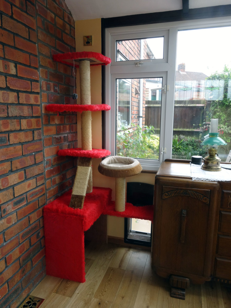The modified cat tree in the conservatory prior to building the cats highway.