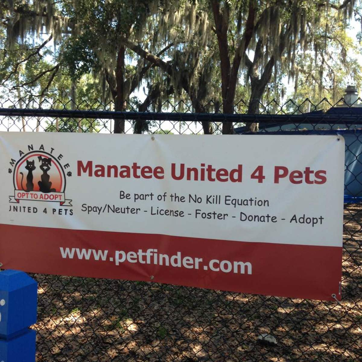 Shelter in Palmetto, Florida, is on the move with creative programs.