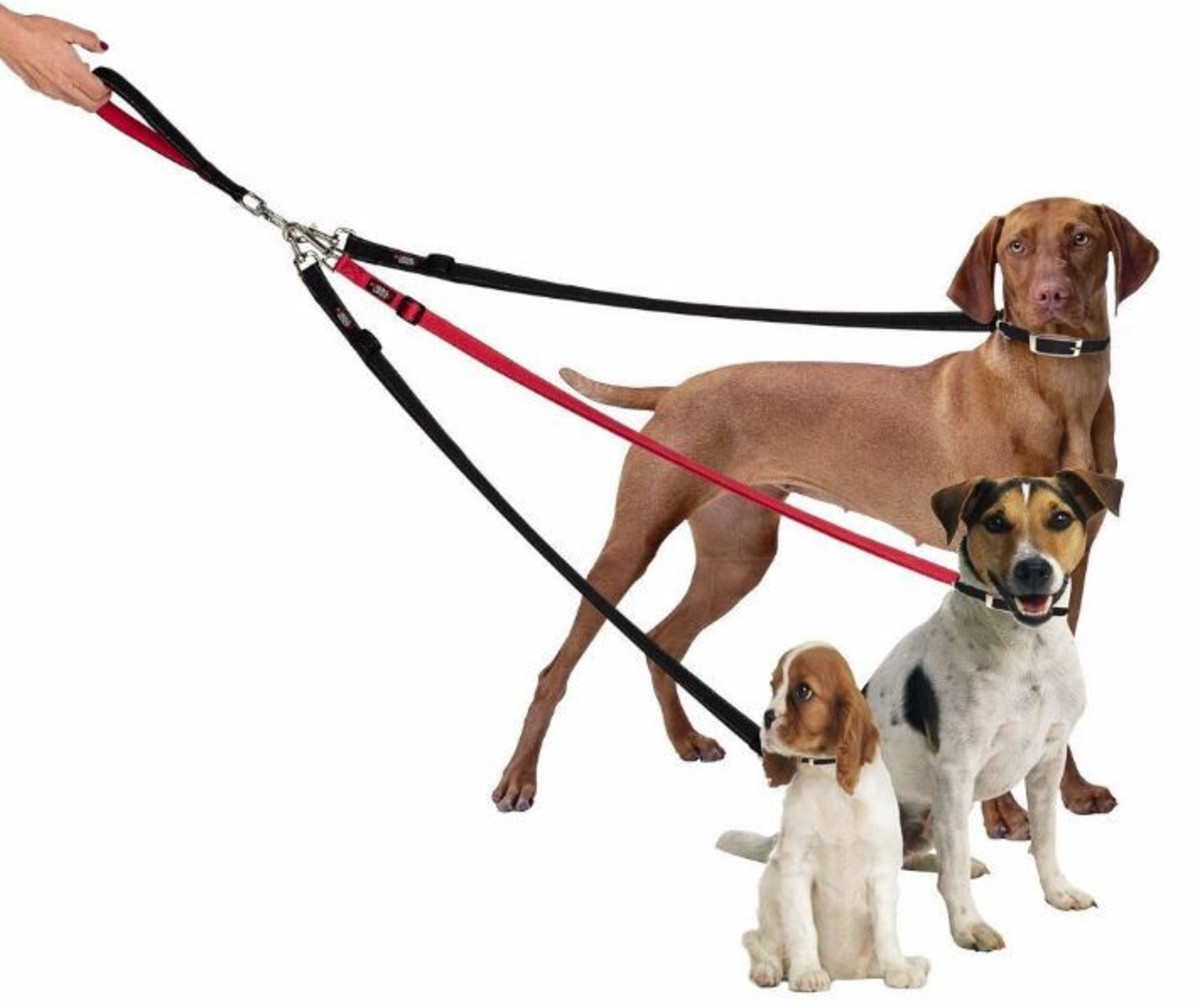 Buildable, no-tangle leash system