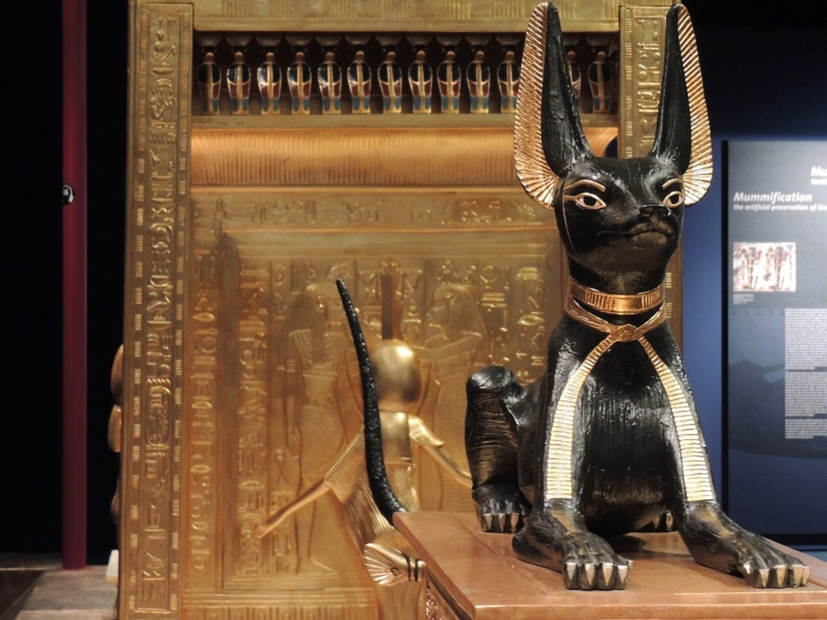 The ancient Egyptians considered cats to have supernatural powers and worshiped them.  Felines were sometimes mummified after death, because they were perceived as incarnations of the gods.  There were severe penalties for injuring them.